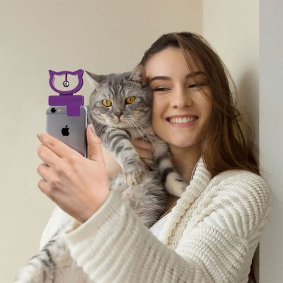 Katten selfie voor smartphones