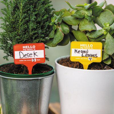 Naamkaartjes voor planten set van 12
