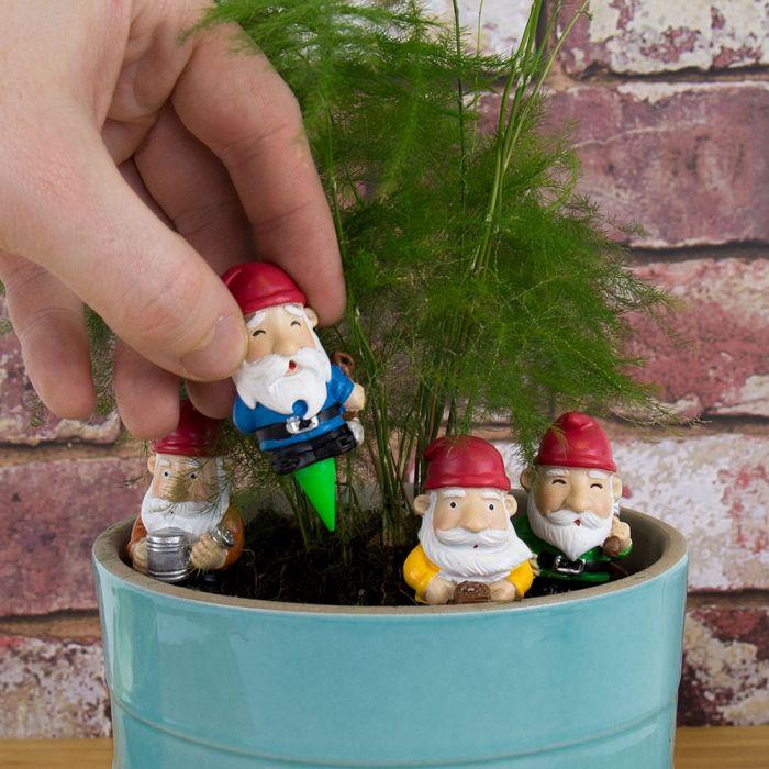 Set van 4 mini tuinkabouters