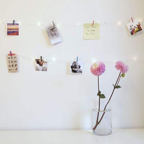 Mini wasspelden LED lichtsnoer