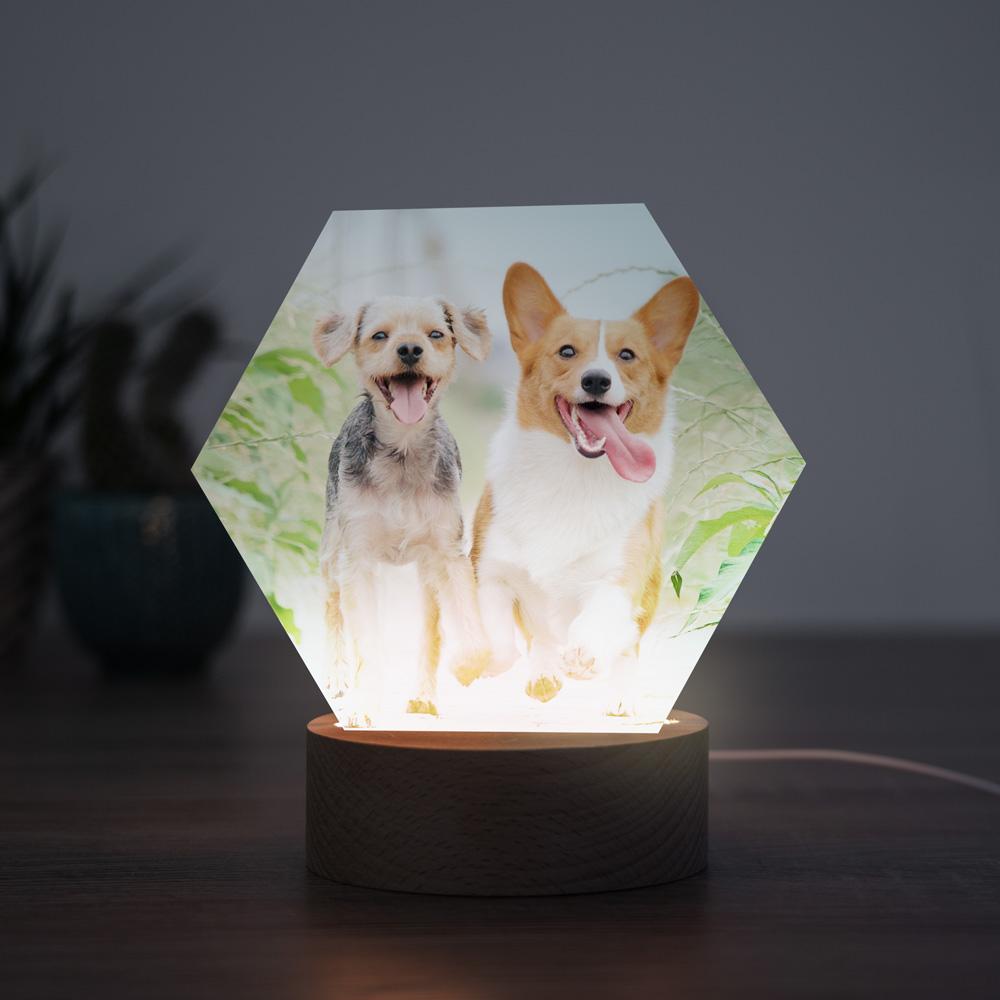 Huisdieren cadeau LED lamp met foto