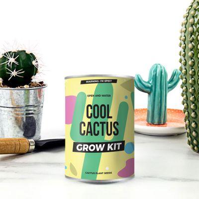 Cactus in blik