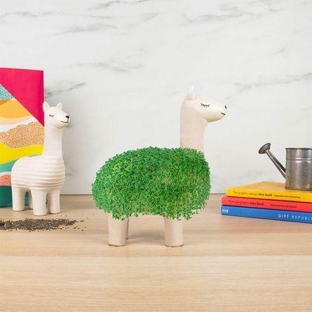 De groene lama