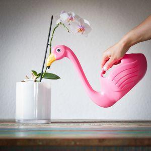 Flamingo Gieter