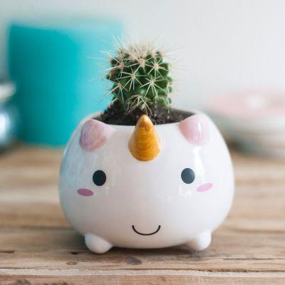 Eenhorn cadeaus - Eenhoorn mini bloempot