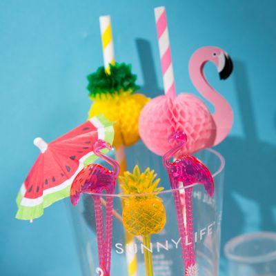 Zomer gadgets - Tropische cocktail set