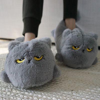 Slippers - Verwarmde katten pantoffels