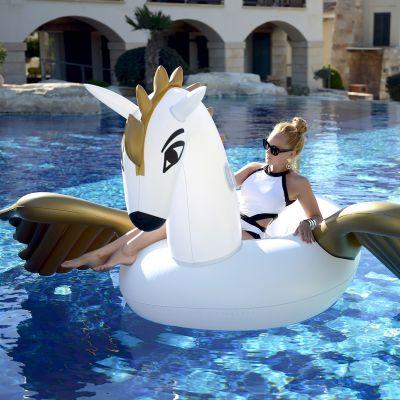 Buiten - Opblaasbare Pegasus