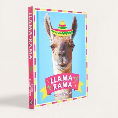 Sinterklaas surprise - Llama-Rama boek