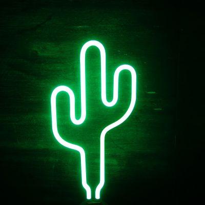 Verlichting - Cactus neon lamp