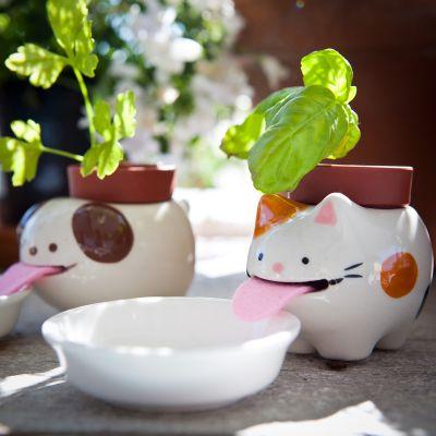 Doe het zelf - Peropon dierenbloempot met watervoorziening