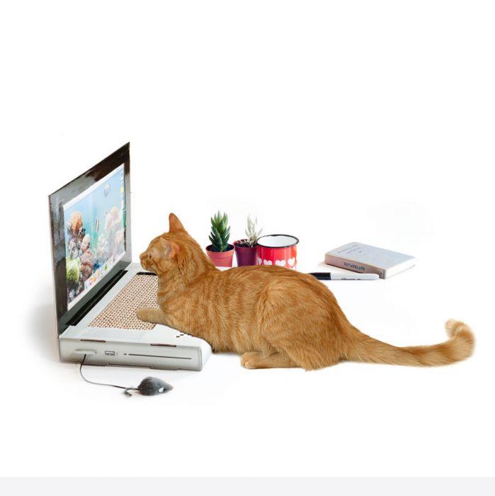 Kras laptop voor katten